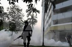 新加坡确诊16例孕妇感染寨卡病毒病例