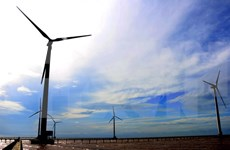 德国协助越南发展风电产业