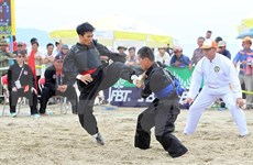 第五届亚洲沙滩运动会:越南体育代表团在奖牌榜上以41金稳坐头名