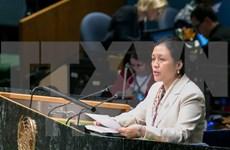 越南呼吁联合国根据国际法原则建立国际秩序