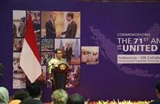 印尼与联合国促进有关各方合作 实现可持续发展