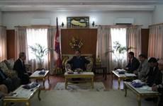 越尼两国合作:巨大潜力有待挖掘