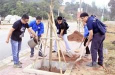 第三届越中青年大联欢:两国青年在谅山共植友谊树