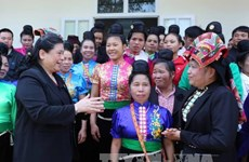 越南国会和政府领导出席各地全民大团结日纪念仪式