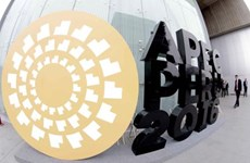 出席APEC24会议:越南为办好2017年APEC系列会议做准备