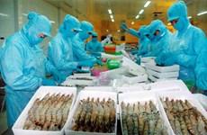 越南水产产业努力实现出口总额达85亿美元的目标