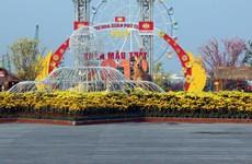 越南各地张灯结彩迎接新春(组图)