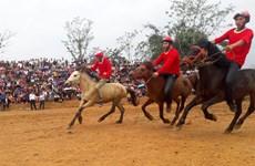 2018年宣光省传统赛马节吸引众多观众前来观看(组图)