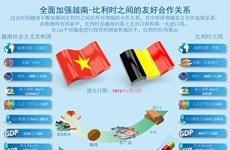 图表新闻:全面加强越南与比利时之间的友好合作关系