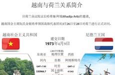 图表新闻:越南与荷兰关系简介