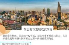 图表新闻:胡志明市发展成就简介