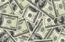 越南各家银行一律下调美元汇率