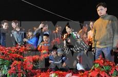 越南南定省旺市--祈求幸运的集市