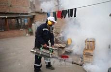 越南各国际口岸加强寨卡病毒防控工作
