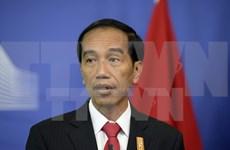 印尼总统佐科•维多多即将对韩国与俄罗斯进行访问