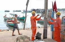 越南南方电力总公司筹资7.664万亿越盾投资多项输电项目