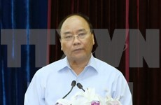 越南政府决定封山育林  努力拯救西原森林