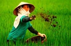 中国化肥占越南化肥进口量近45%