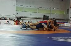 越南游泳和摔跤队在第六届亚洲儿童运动会上获5金