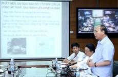 第三号台风逼近越南    政府成员指导部署第三号台风防御工作