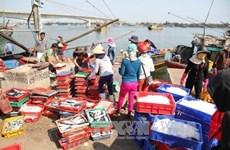 2016年前8月越南水产捕捞产量达200多万吨