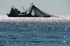 缅甸南部部分岛屿实施禁渔