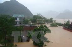 全国为中部地区同胞克服台风造成的损失提供援助
