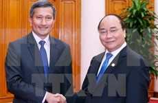 新加坡外长维文:希望新越进一步加强政治安全合作关系