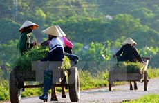 第十四届国会二次会议:新农村建设有利改善人民生活水平
