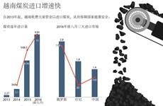 越南煤炭进口增速快