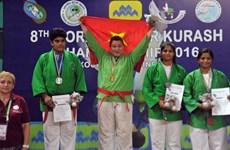 2016年世界青年克柔术锦标赛:越南队总排名第二