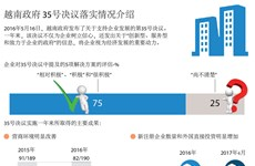 越南政府 35号决议落实情况介绍