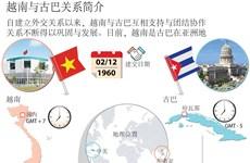 越南与古巴关系简介