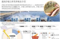 越南沙壤土虾类养殖业介绍
