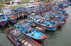 越南主动跟踪和应对多年来最强台风杜苏芮