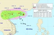 全国各地主动应对第四号台风