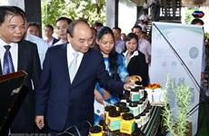 越南政府总理阮春福出席昆嵩玉玲人参与其他药材投资促进会(组图)