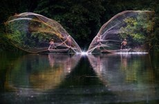 英国Boredpanda网站上的越南之美