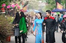 河内春节花市气氛浓