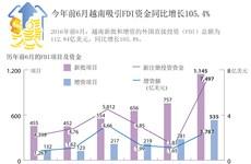 今年前6月越南吸引FDI资金同比增长105.4%