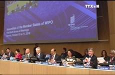 越南出席世界知识产权组织成员国大会第五十六届会议