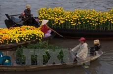 芹苴市旅游业将集中开发特色旅游产品