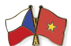 越南与捷克政治磋商在越南举行