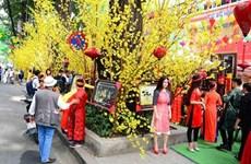 胡志明市的春节空间(组图)