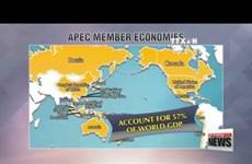 2017年APEC峰会助推包容性与可持续增长