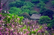 """山罗省木州国家旅游区     吸引游客们的""""磁石"""""""