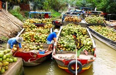 槟椥省大力推出具有代表性旅游产品