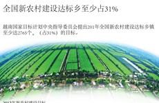 全国新农村建设达标乡至少占31%