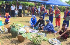 越南各民族文化旅游村的查皮琴制作体验空间