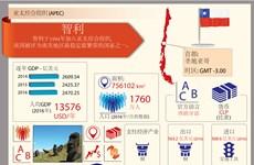 亚太经合组织成员经济体——智利
